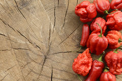 Various red hot peppers Stock Photos