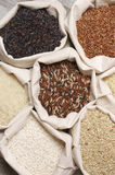 Various rice in bags Royalty Free Stock Photo