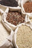 Various rice in bags Stock Image