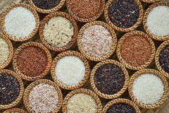 Various rice collection Stock Image