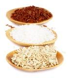 Various Rice Stock Image