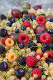 Various ripe berries Royalty Free Stock Photos