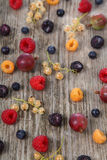 Various ripe berries Stock Photos