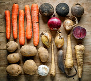 Various root vegetables Stock Images