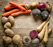 Various root vegetables Royalty Free Stock Photo