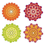 Various samples of flowers. There is a vector version Royalty Free Stock Images