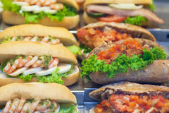 Various sandwiches Stock Images