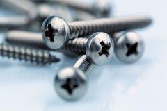 Various screws Royalty Free Stock Image