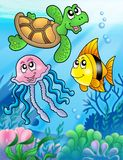 Various sea fishes and animals Stock Photos
