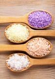 Various sea salt Stock Photos