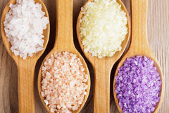 Various sea salt Stock Photo