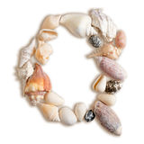 Various sea shells capital Q on  white background Stock Image
