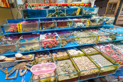 Various seafood in fish market in Guangzhou city stock image