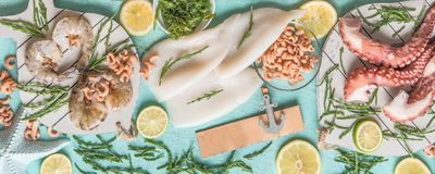 Various seafood: octopus , shrimp, squid and seaweed on light blue background with ingredients, top view. Seafood concept royalty free stock image
