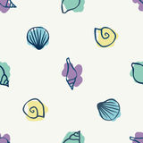 Various seashells. Various colorful seashells - seamless background Royalty Free Stock Photos