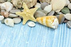 Various seashells, marine stones and starfish on blue rustic woo Stock Photos