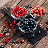 Various seasonal berries Royalty Free Stock Images