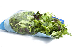 Various seasonal salad packed. And ready in bag Royalty Free Stock Photos