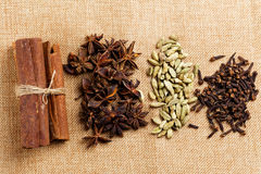 Various seasonings for cooking, Star Anise  Cardamom, Clove, Cinnamon. Royalty Free Stock Photos