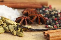 Various seasonings on wooden background. Spices. Various seasonings for cooking on wooden background Stock Images