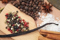 Various seasonings on wooden background. Spices. Various seasonings for cooking on wooden background Stock Photos