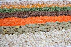 Various seeds and lentils Stock Images