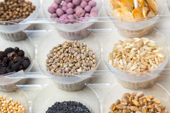 Various seeds in plastic bowls royalty free stock image