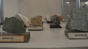Various semi precious rocks displayed on exhibition royalty free stock photography