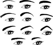 Various shapes of eyebrows Stock Photography