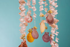 Various shell mobile Stock Photo