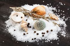 Various shells and coarse grained Sea Salt. And peppercorns on dark brown wooden board stock photos