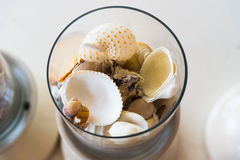 Various shells in glass Royalty Free Stock Photo