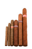 Various sizes of Cuban cigars Stock Photos