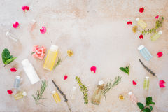 Various skincare oils, fresh medicinal herbs and flowers. Various skincare oils, fresh medicinal herbs  and flowers, for spa treatment, on concrete. Top view Stock Image