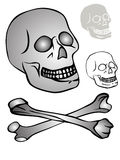 Various skull Stock Photos