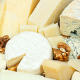 Various sliced cheeses and walnuts Stock Photography