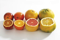 Various sliced citrus fruits Stock Images