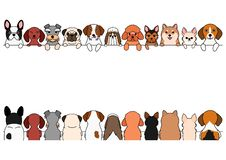 Various Small dogs border set. Cute dogs border set, small dogs, front side and back side royalty free illustration