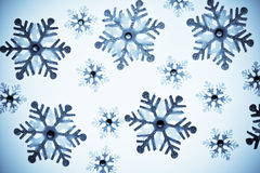 Various snowflakes Royalty Free Stock Photo