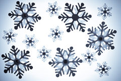 Various snowflakes Stock Photography