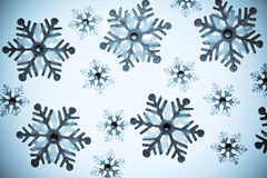 Various snowflakes Royalty Free Stock Photos