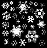 Various snowflakes on black Stock Image