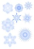 Various snowflakes. Eight different snowflakes on a blue tint Royalty Free Illustration
