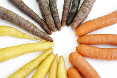 Various sorts of carrots, purple, yellow, white Royalty Free Stock Photography
