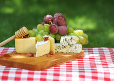 Various sorts of cheese with grapes Royalty Free Stock Image