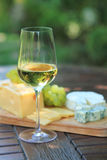 Various sorts of cheese, grapes and white wine. Various sorts of cheese, grapes and one glass of the white wine Stock Photography