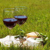 Various sorts of cheese and two glasses of the natural homemade. Various sorts of cheese, grape leaves and two glasses of the natural homemade red wine Stock Photo