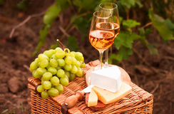 Various sorts of cheese, Two glasses of white wine in the garden. Various sorts of cheese, Two glasses of white wine in the vineyard Royalty Free Stock Photography
