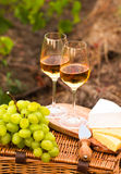 Various sorts of cheese, Two glasses of white wine in the garden. Various sorts of cheese, Two glasses of white wine in the vineyard. selective Focus Royalty Free Stock Images