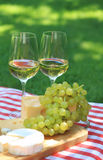 Various sorts of cheese with white wine. Various sorts of cheese, grapes and two glasses of the white wine Stock Photos